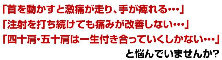 2010y01m16d_194237937.jpg